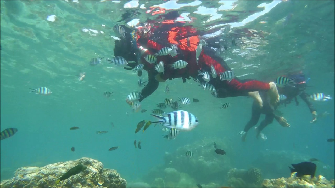 Snorkelling tidung island