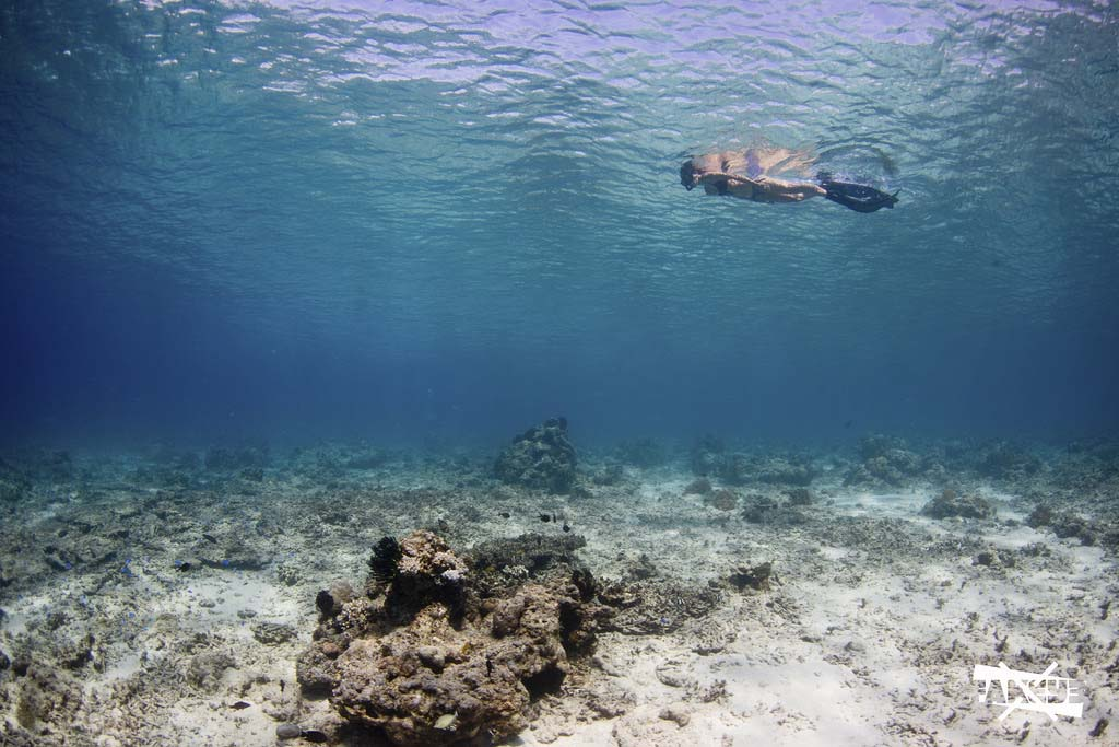 Snorkelling in Gili islands