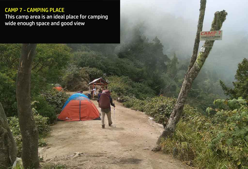 Camp 7 - Raung hiking via Kalibaru - Ideal place for camping