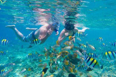Snorkeling Thousand Islands - Jakarta