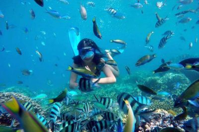 Snorkeling around Harapan island - Thousand Islands